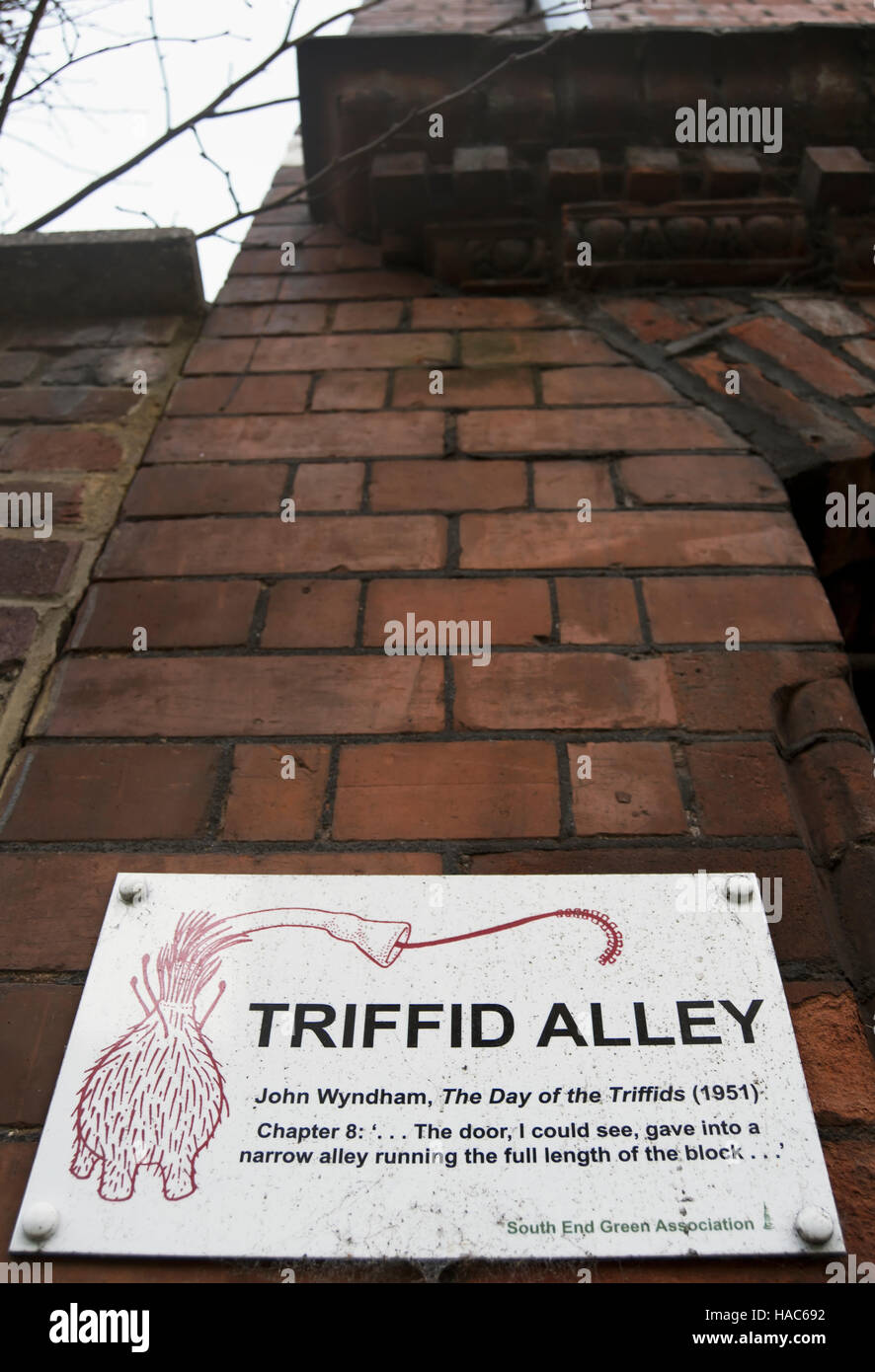 plaque marking triffid alley, so nicknamed for its part in the john wyndham novel, the day of the triffids, hampstead, - Stock Image