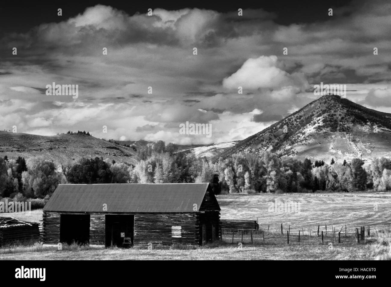 An old barn sits outside of Crested Butte, Colorado during autumn offering a glimpse back in time - Stock Image