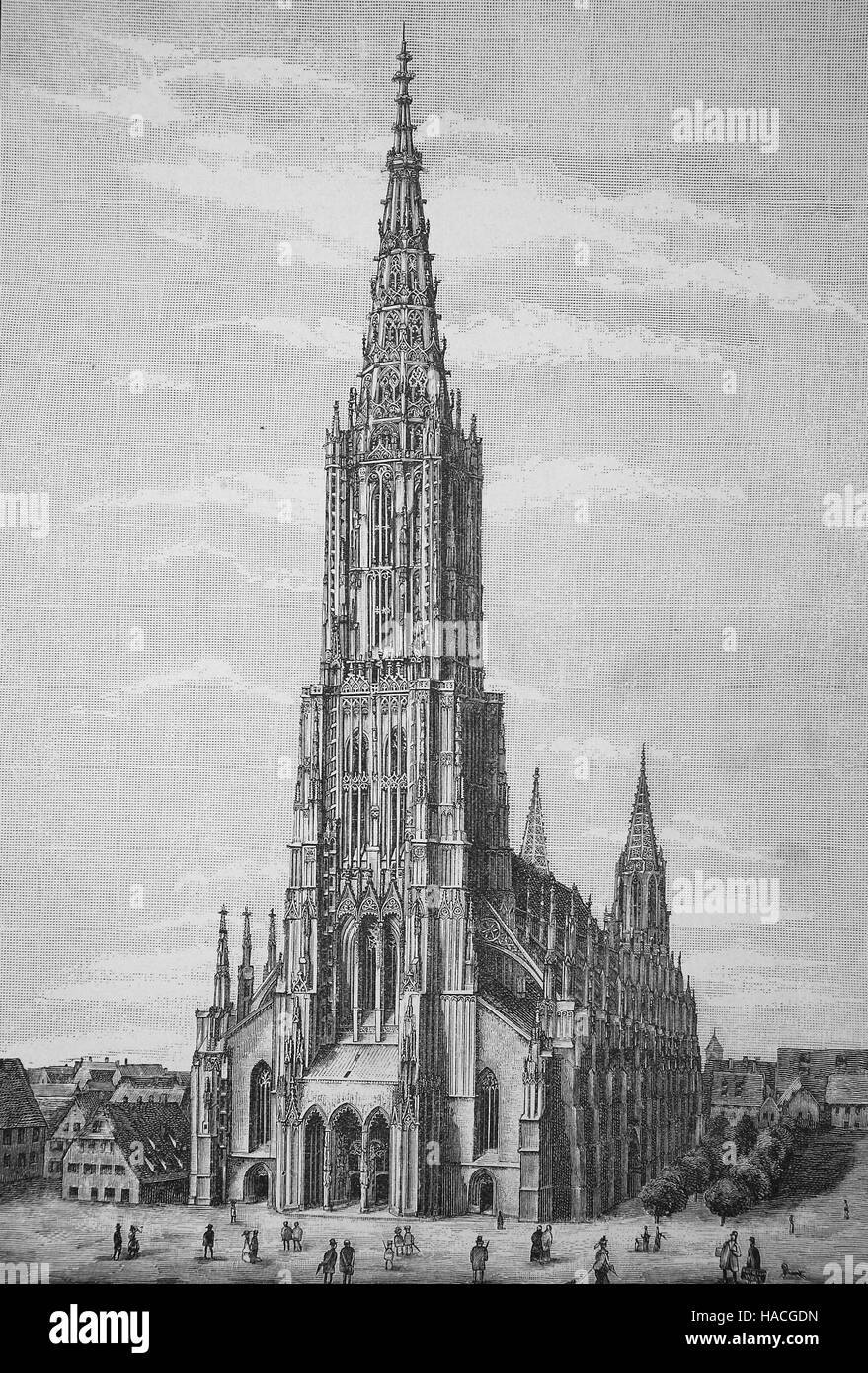 Ulm Minster, Ulmer Muenster, is a Lutheran church located in Ulm, Germany, 1880, historic illustration, woodcut Stock Photo