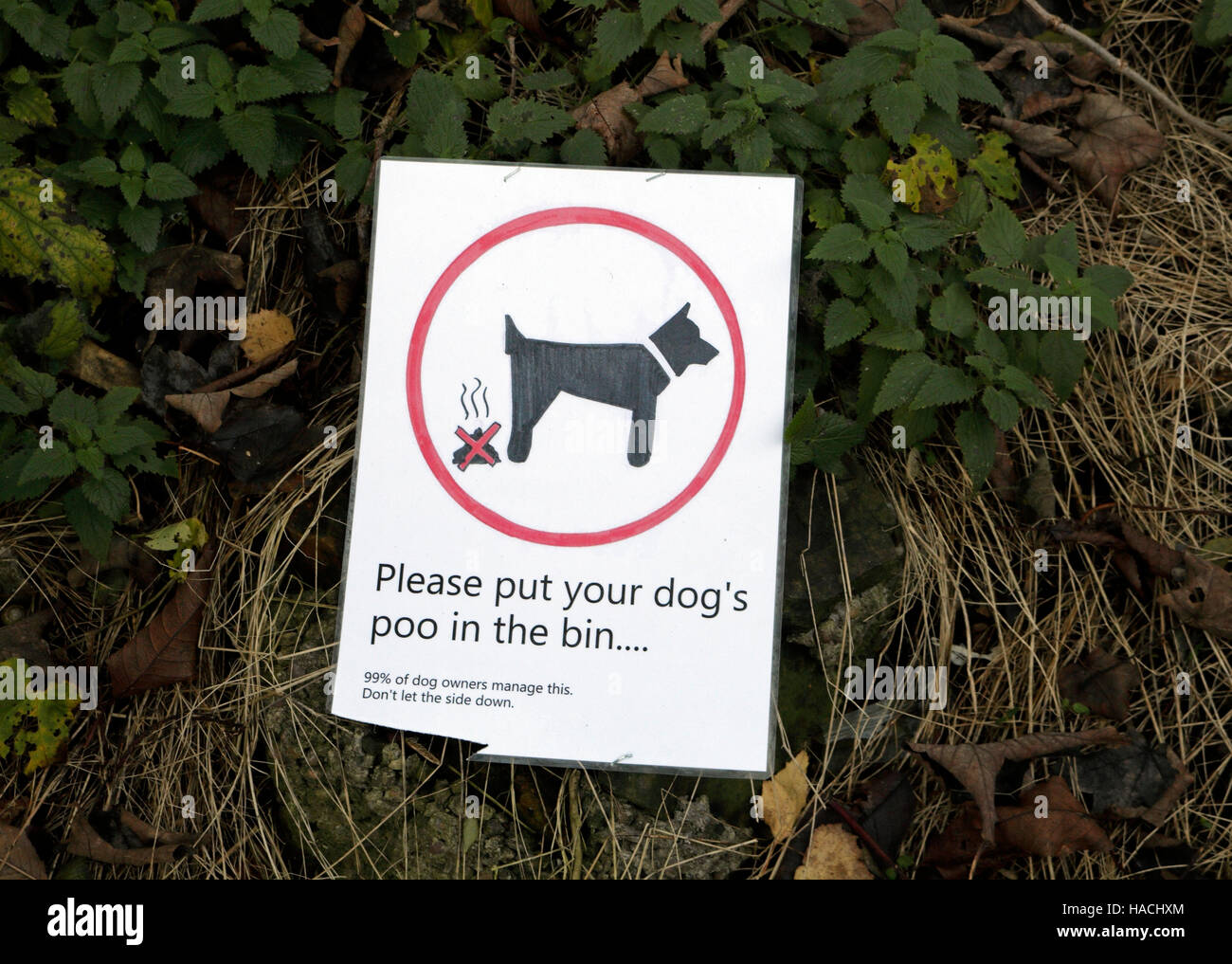 Home made sign for Dog owners to clean up the mess. - Stock Image