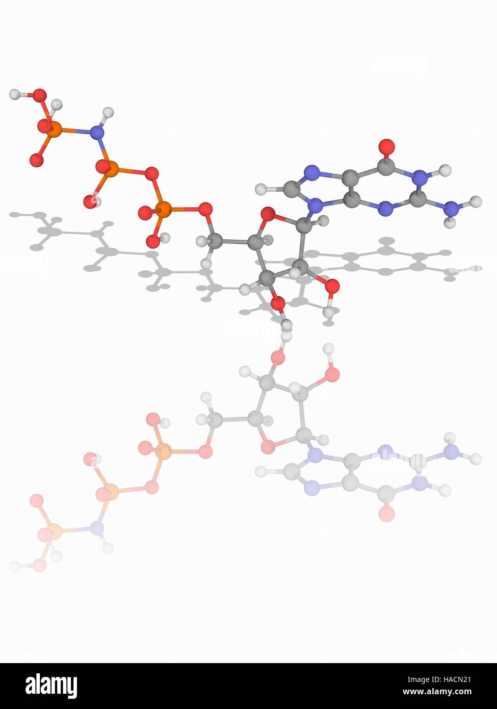 5'-guanylyl imidodiphosphate. Molecular model of the purine nucleotide 5'-guanylyl imidodiphosphate (C10.H17.N6.O13.P3). - Stock Image