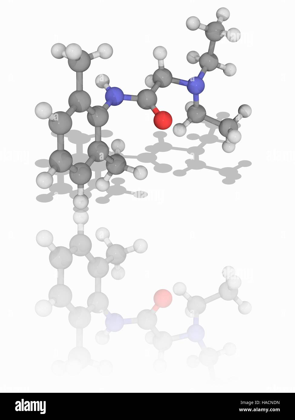Lidocaine. Molecular model of the drug lidocaine (C14.H22.N2.O), used as a local anaesthetic and an anti-arrhythmic - Stock Image
