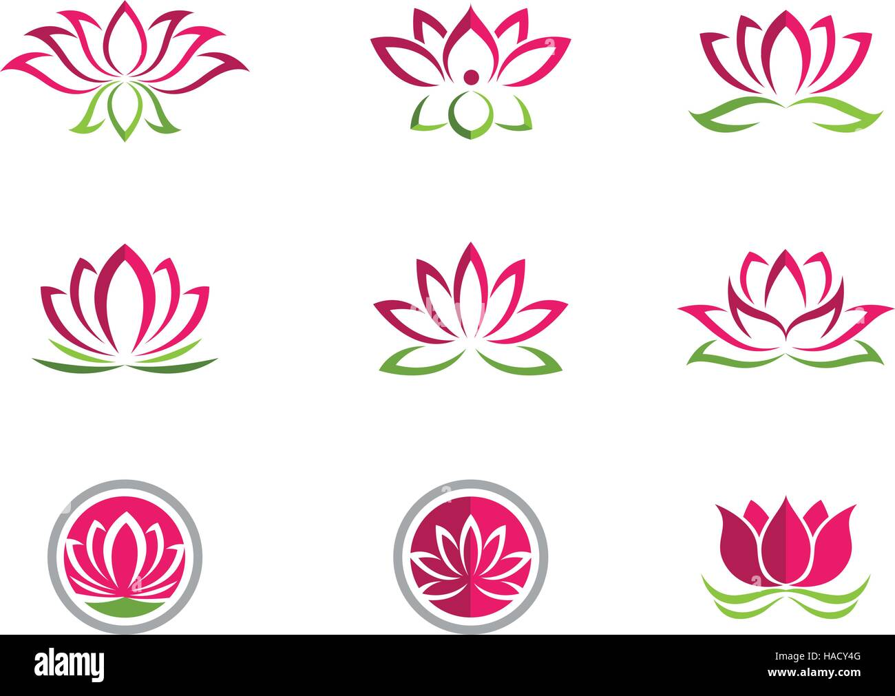 Sacred Lotus Flower Pink Stock Vector Images Alamy