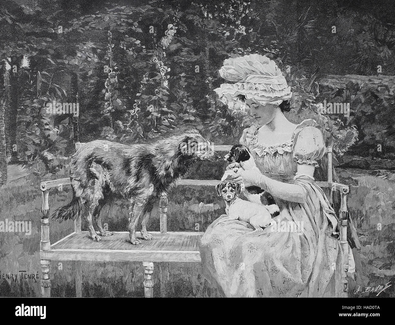 Girl with two dog puppies sitting on a bench, a bigger dog sniffing the puppy, by Henry Tenre, illustration published - Stock Image