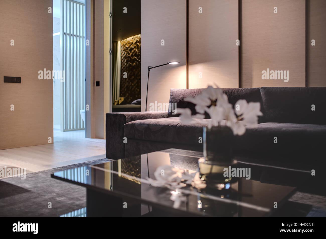 Modern style sitting-room - Stock Image