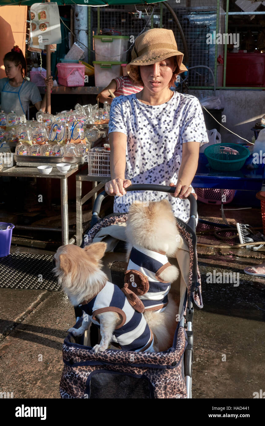 Woman transporting pampered pet dogs in a child pushchair. Thailand S. E. Asia Stock Photo