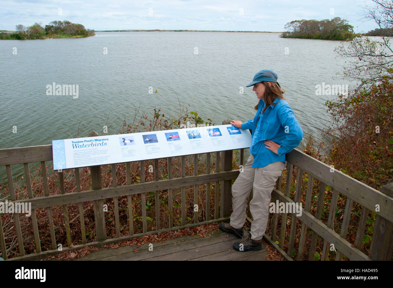 Observation platform on Otter Point, Trustom Pond National Wildlife Refuge, Rhode Island Stock Photo