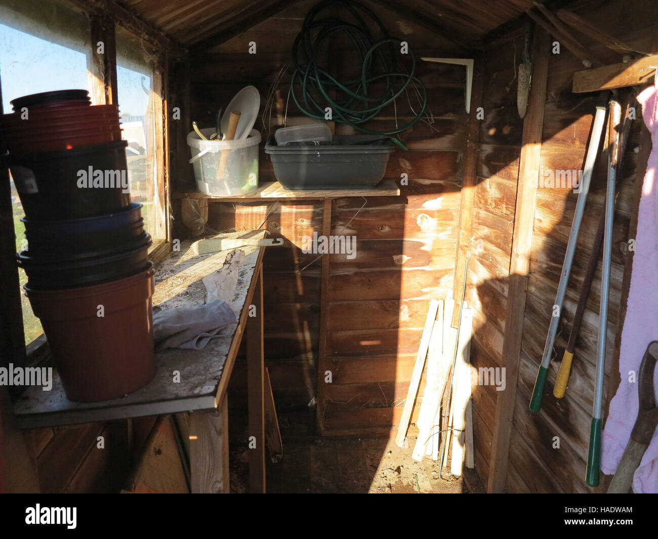 Allotment Garden Wooden Shed Interior In Winter In Sussex England