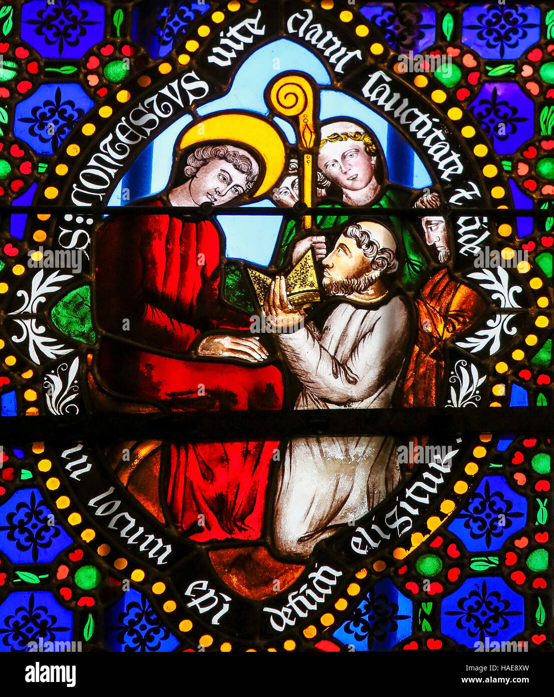 Stained Glass window in the Cathedral of Bayeux, France, depicting Saint Conteste or Contentius, consecrated as - Stock Image