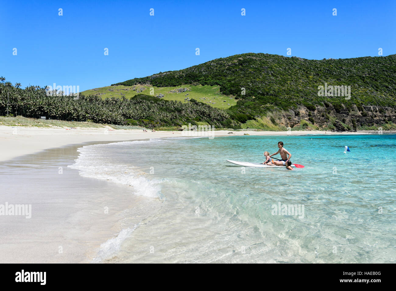 Young Boy and two Girls paddleboarding at Ned's Beach, Lord Howe Island, New South Wales, NSW, Australia - Stock Image