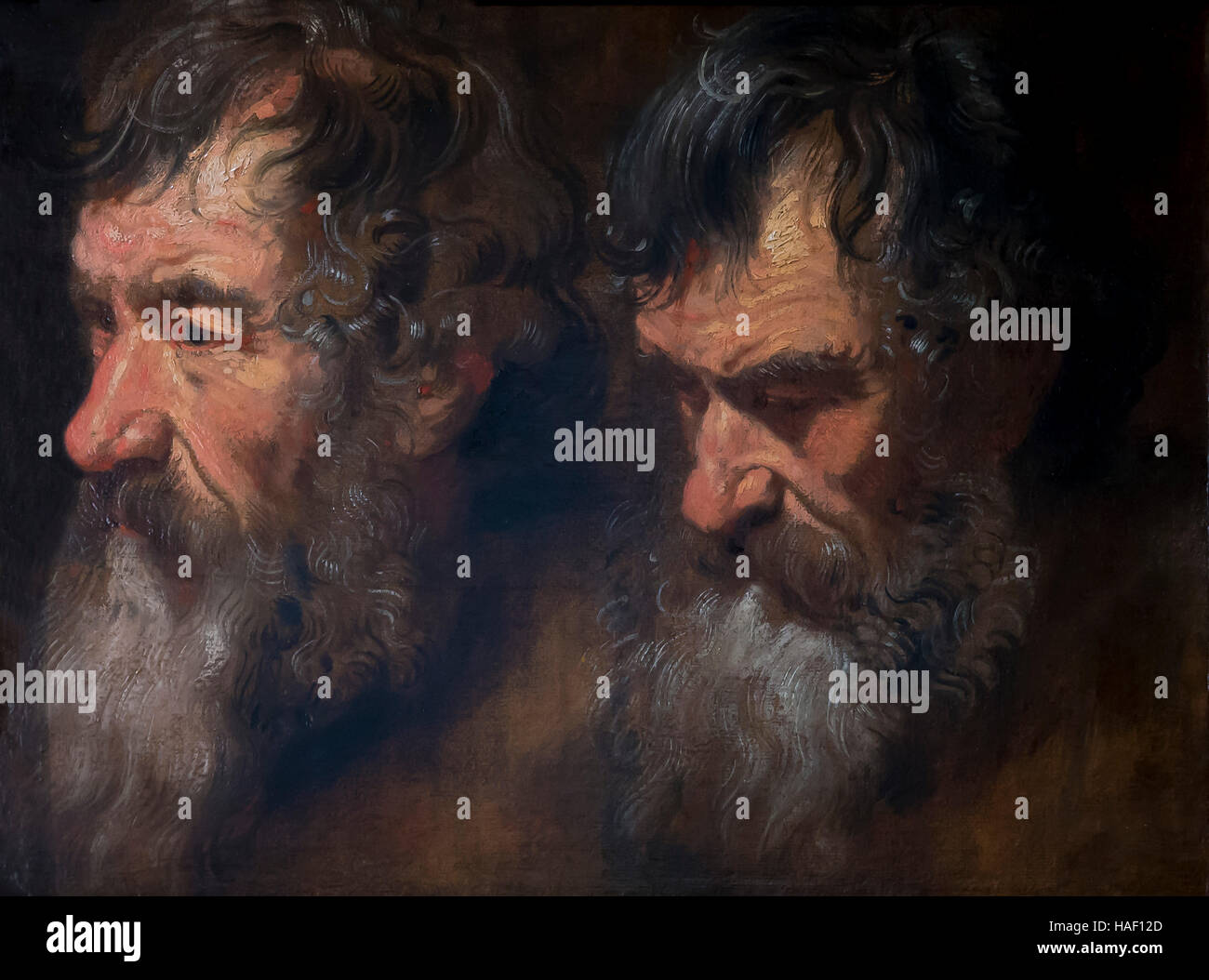 Two studies of a Man's Head, by Anthony van Dyck, circa 1618 - 1619, Rockoxhuis, Antwerp, Belgium, Europe - Stock Image