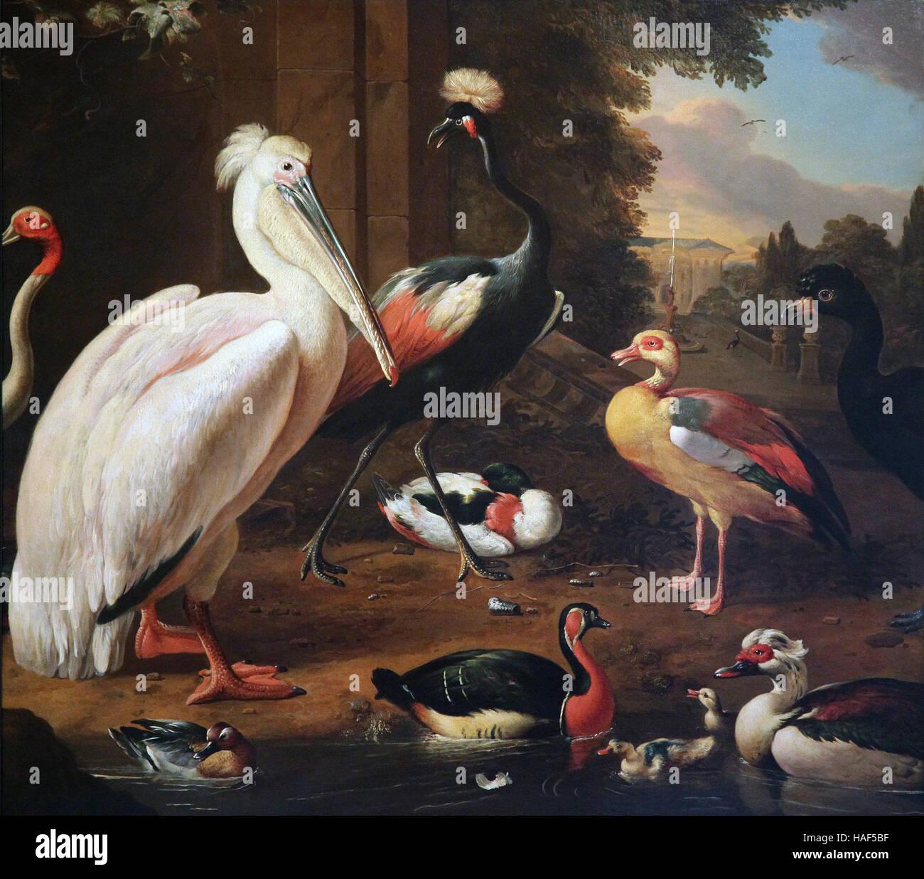 Melchior d'Hondecoeter 1636-1695 Water birds 1685 - Stock Image