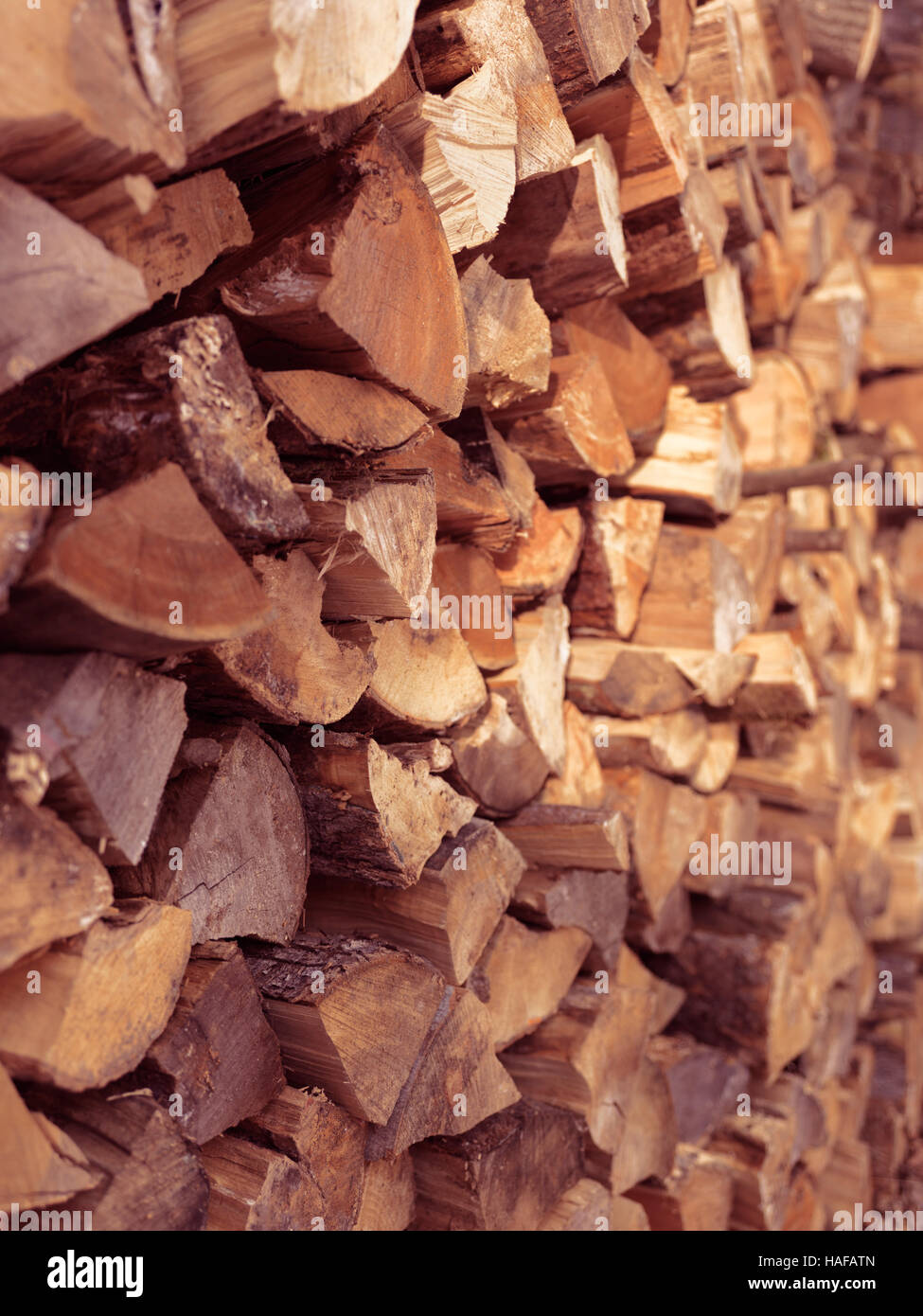 Stacked firewood supply in warm sunset light background texture - Stock Image