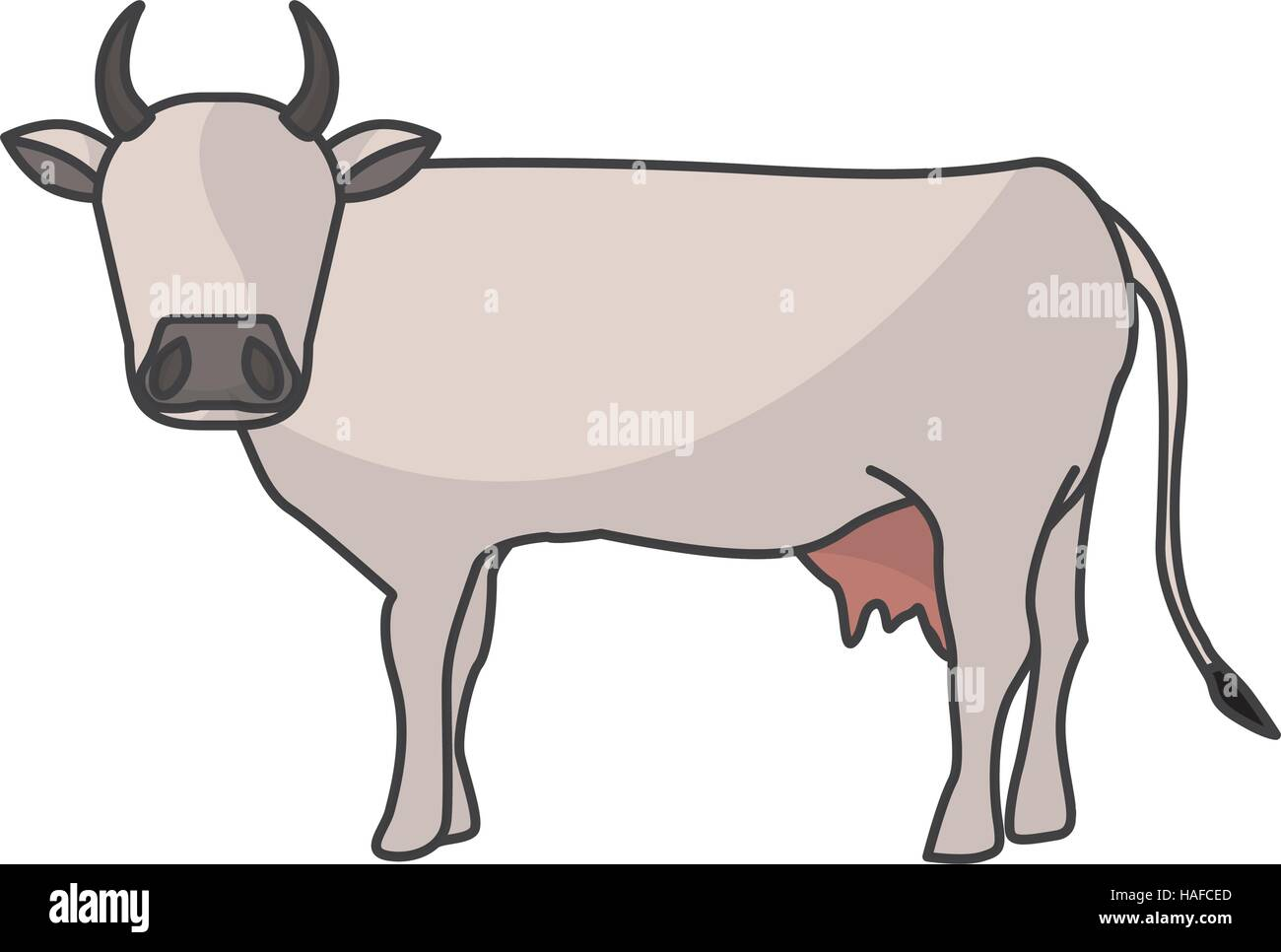 Line Drawing Cow Calf Stock Photos & Line Drawing Cow Calf
