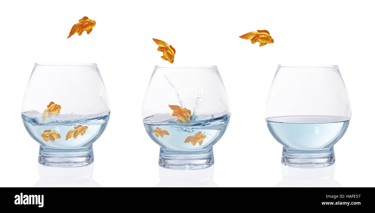 Heading for calmer waters - stylised goldfish leaping from choppy water to calm water - Stock Image