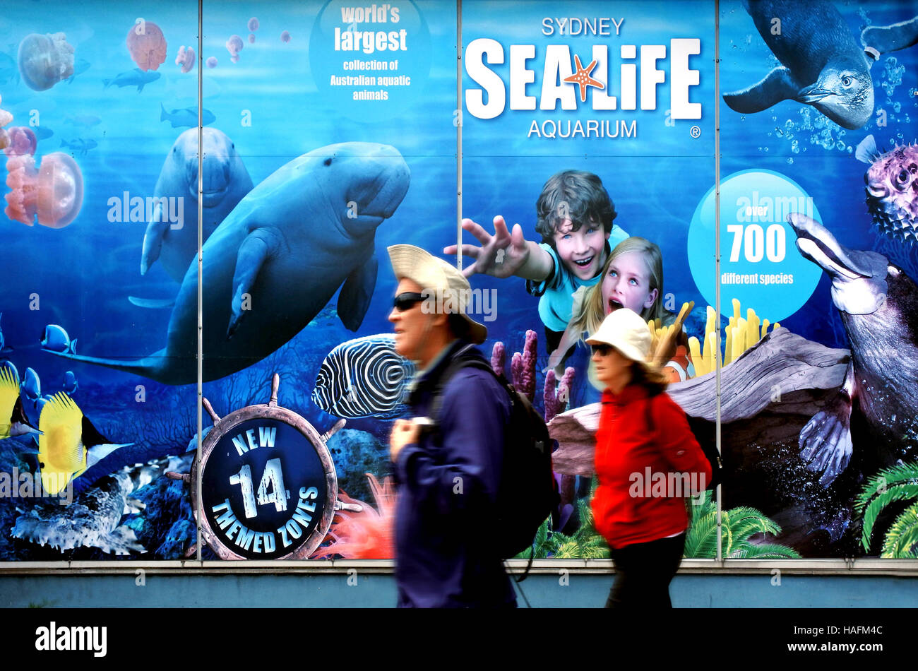 SYDNEY - OCT 18 2016:Visitors at Sea Life Sydney Aquarium that displaying more than 700 species and 13,000 individual - Stock Image