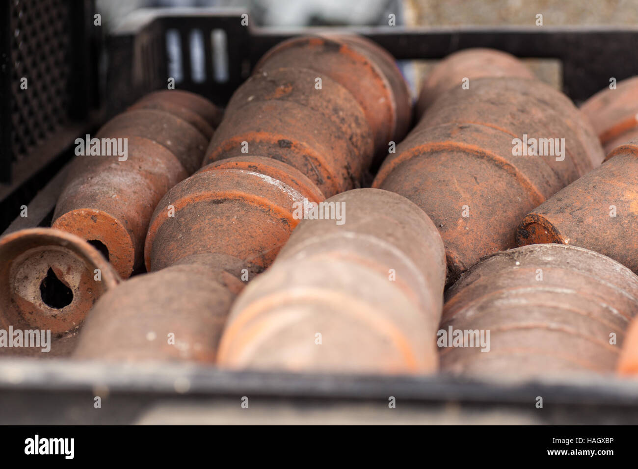 Old and dirty terracotta plant pots in a tray Stock Photo
