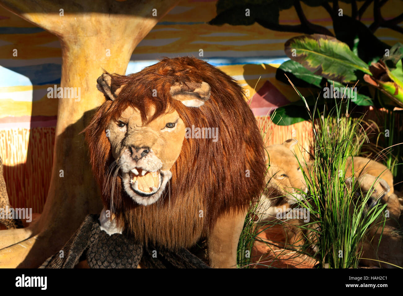 Toy Lions Stock Photos & Toy Lions Stock Images - Alamy