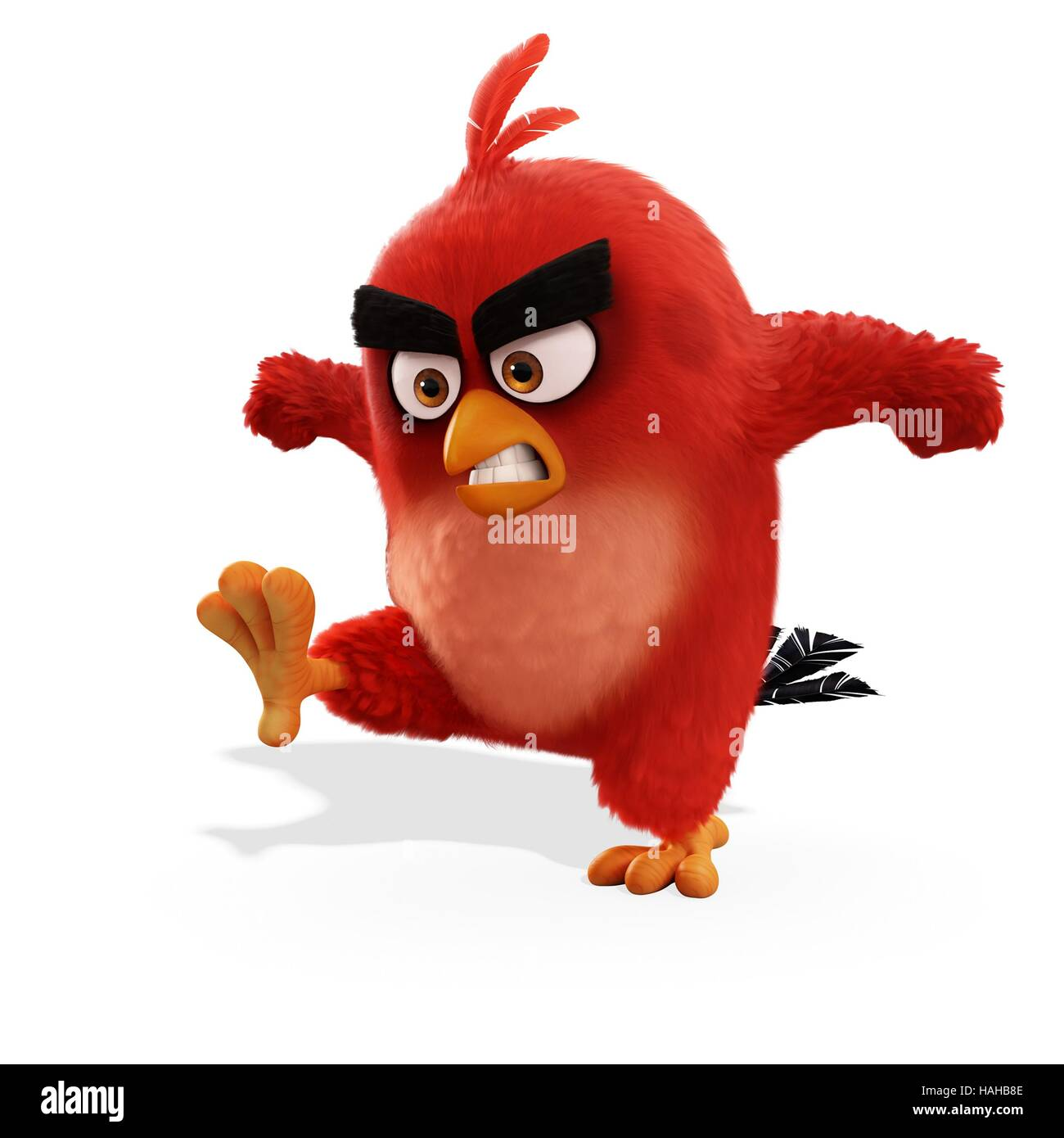 The Angry Birds Movie Year : 2016 USA Director : Clay Kaytis