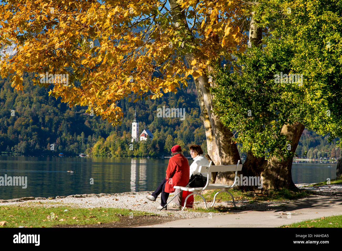 Two friends on a park bench with St. Marys Church of the Assumption beyond, Bled, Upper Carniola, Slovenia - Stock Image
