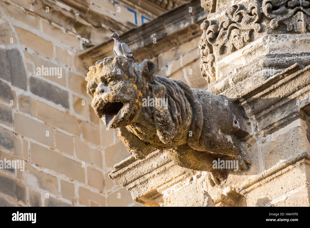 Gargoyle protruding from the facade of a cathedral - Stock Image