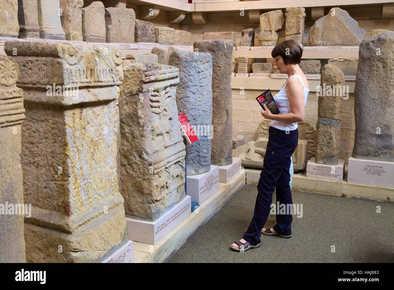 Woman tourist looking at artefacts. Chesters Roman Fort and Museum. Chollerford, Hexham, Northumberland, England, - Stock Image
