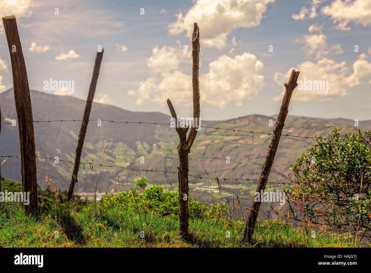 Old Wood Fence Posts With Barb Wire, Aerial View Of Andean Cordillera In The Background, Ecuador, South America - Stock Image