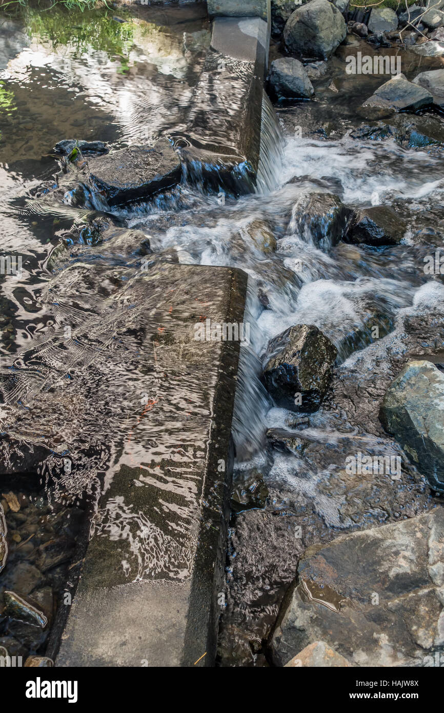 Closeup of rushing water in Des Moines Creek in Washington State. - Stock Image