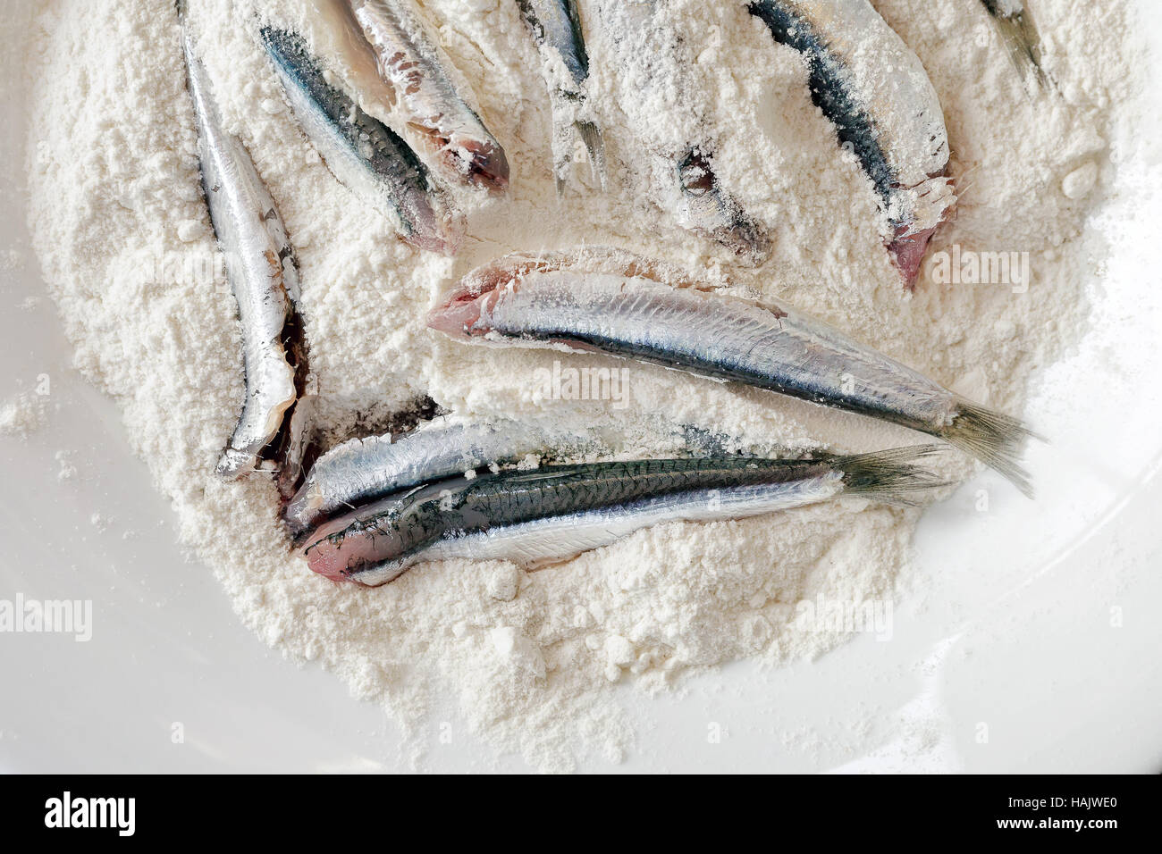 Breaded anchovies, clean and ready to be cooked. Anchovies in the dish filled with white flour. To fry in oil. - Stock Image