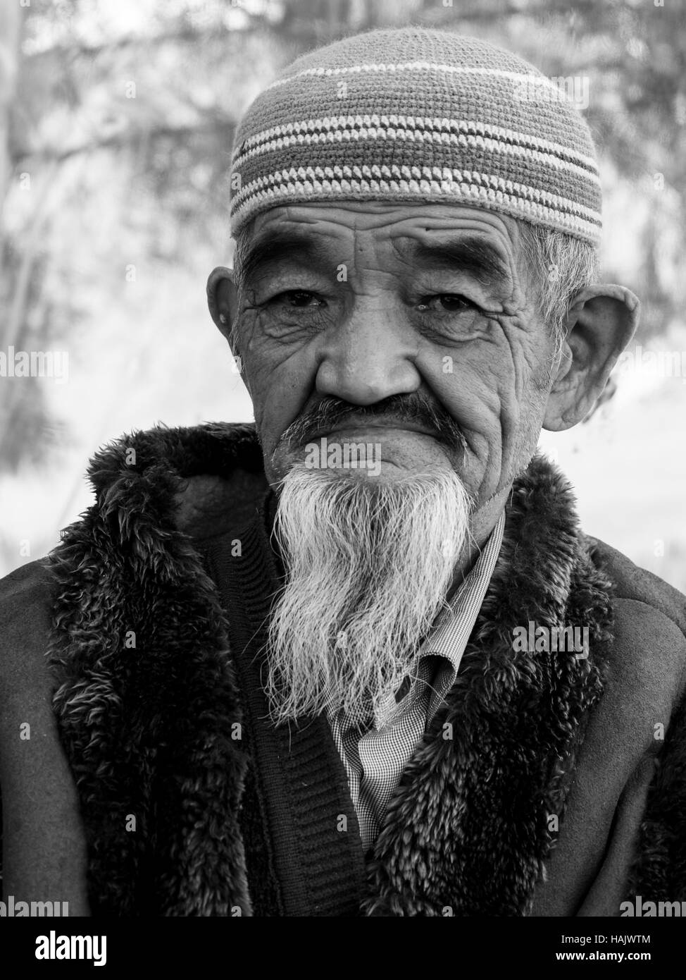 A bearded Kyrgyz old man poses serious for a portrait - Stock Image