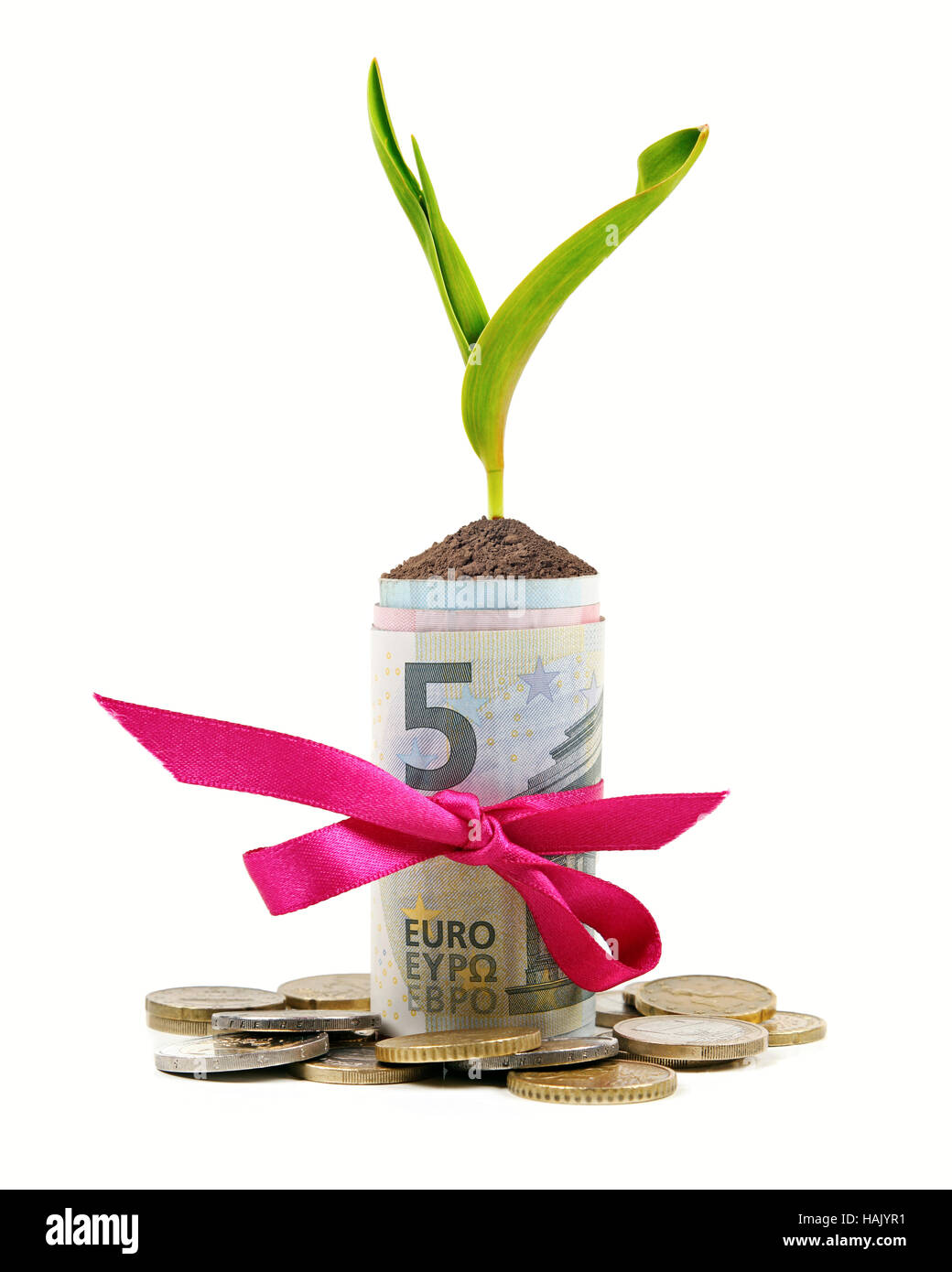 plant growing out of money roll isolated on white - Stock Image