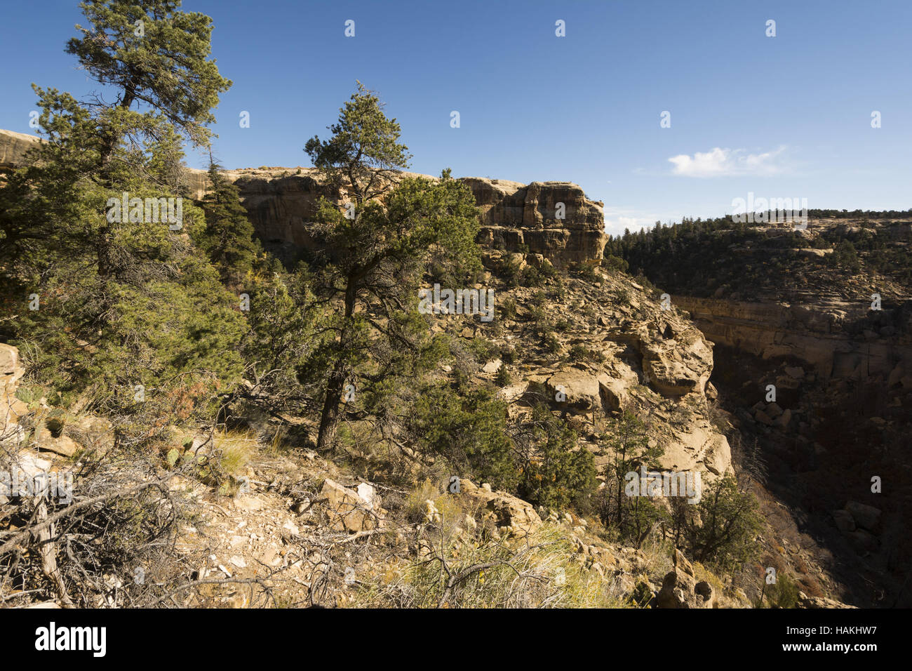 Colorado, Ute Mountain Tribal Park, landscape - Stock Image