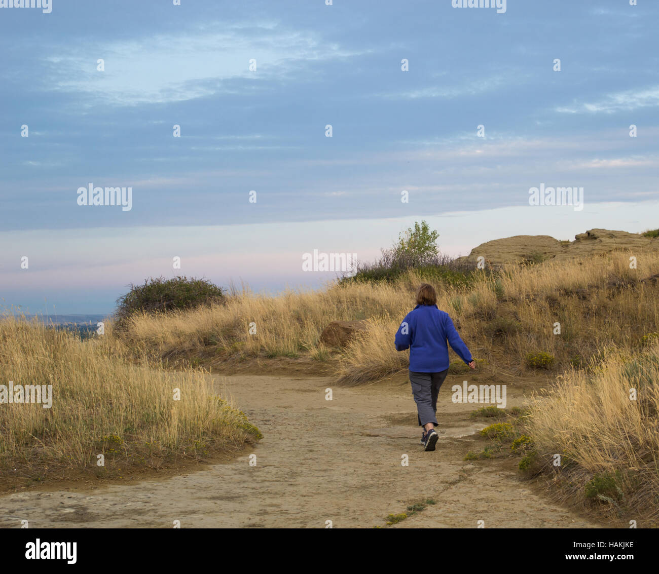 A woman in cornflower blue jacket with back to camera walking briskly on grass-lined trail toward sandstone boulders - Stock Image