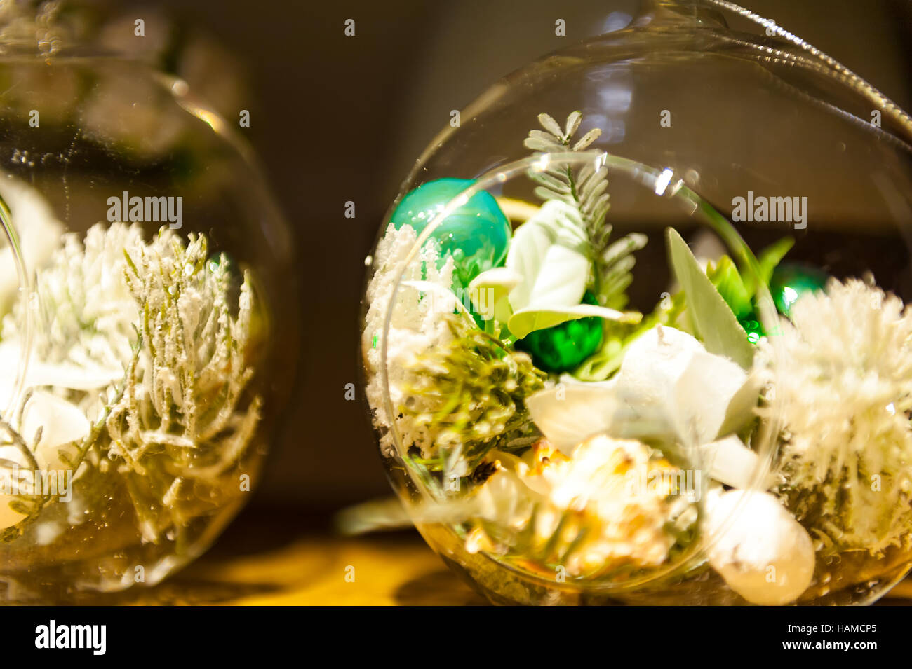 Terrarium With Succulent Plants On Wooden Table Stock Photo Alamy