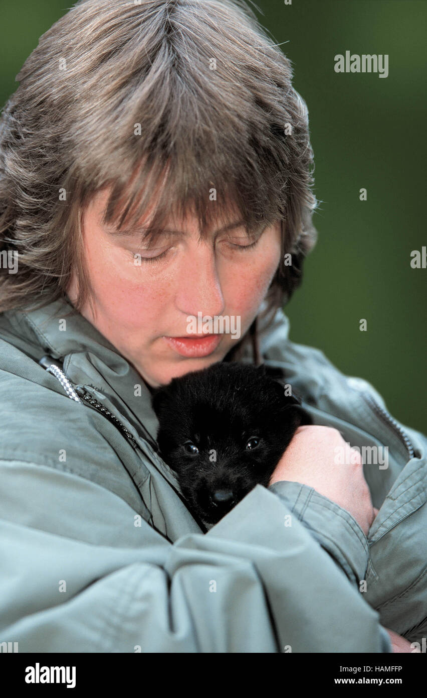 Woman with puppy / Frau mit Welpe Stock Photo