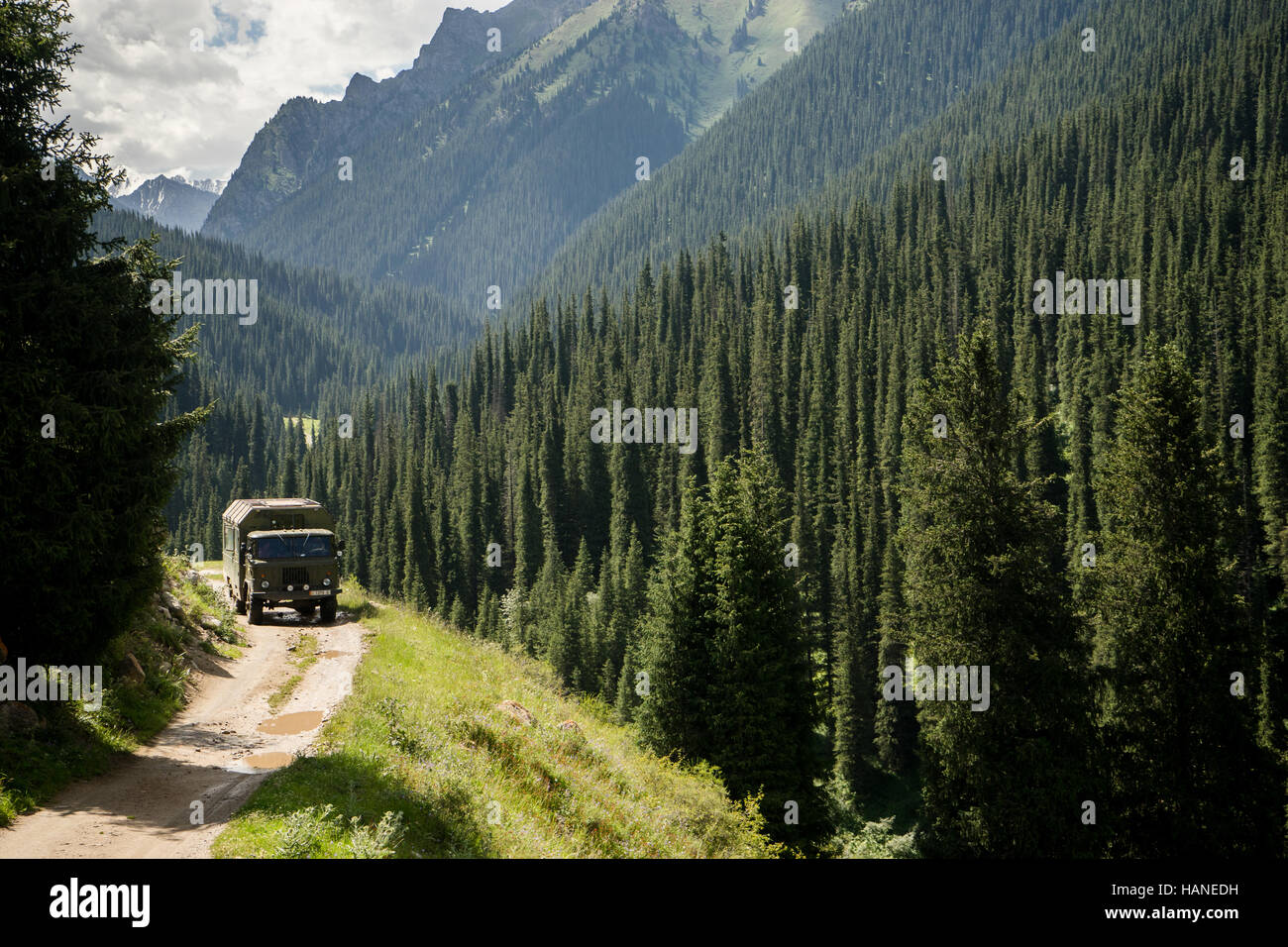 A military truck travels on an unpaved road through the valley full of conifers - Stock Image