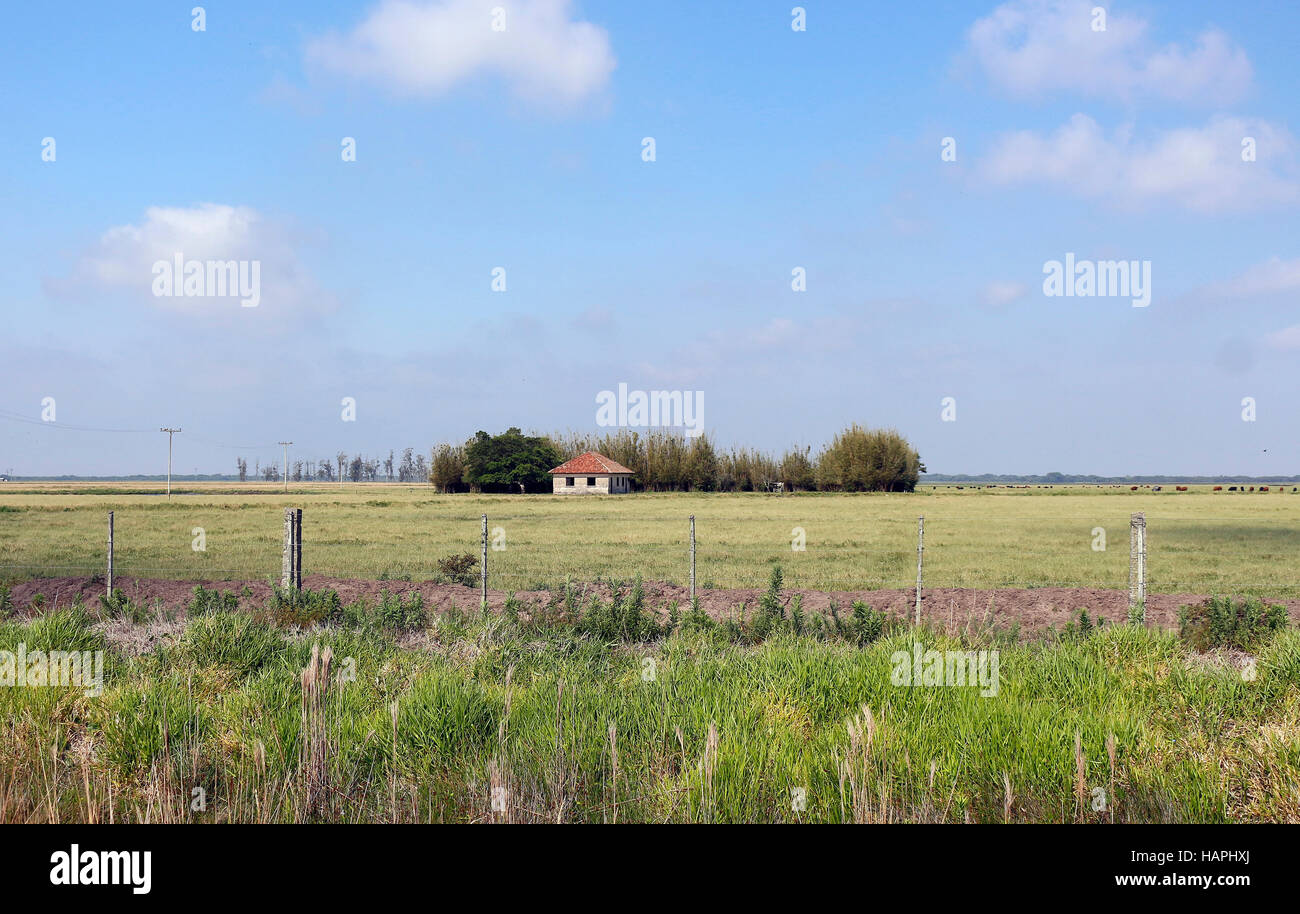 This is a very common scene in the fields of Rio Grande do Sul - Brazil. The farm house and great extension of land. - Stock Image
