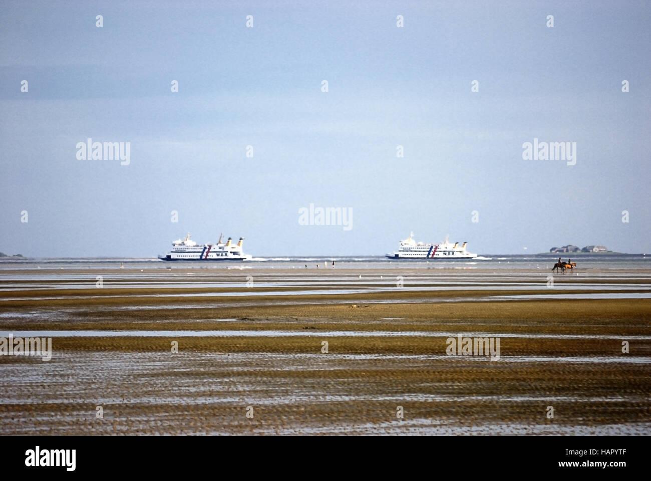 Faehren+Pferde - ferrys+horses - Stock Image