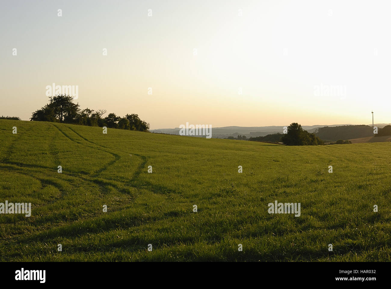 abendstimmung - in the mood - Stock Image