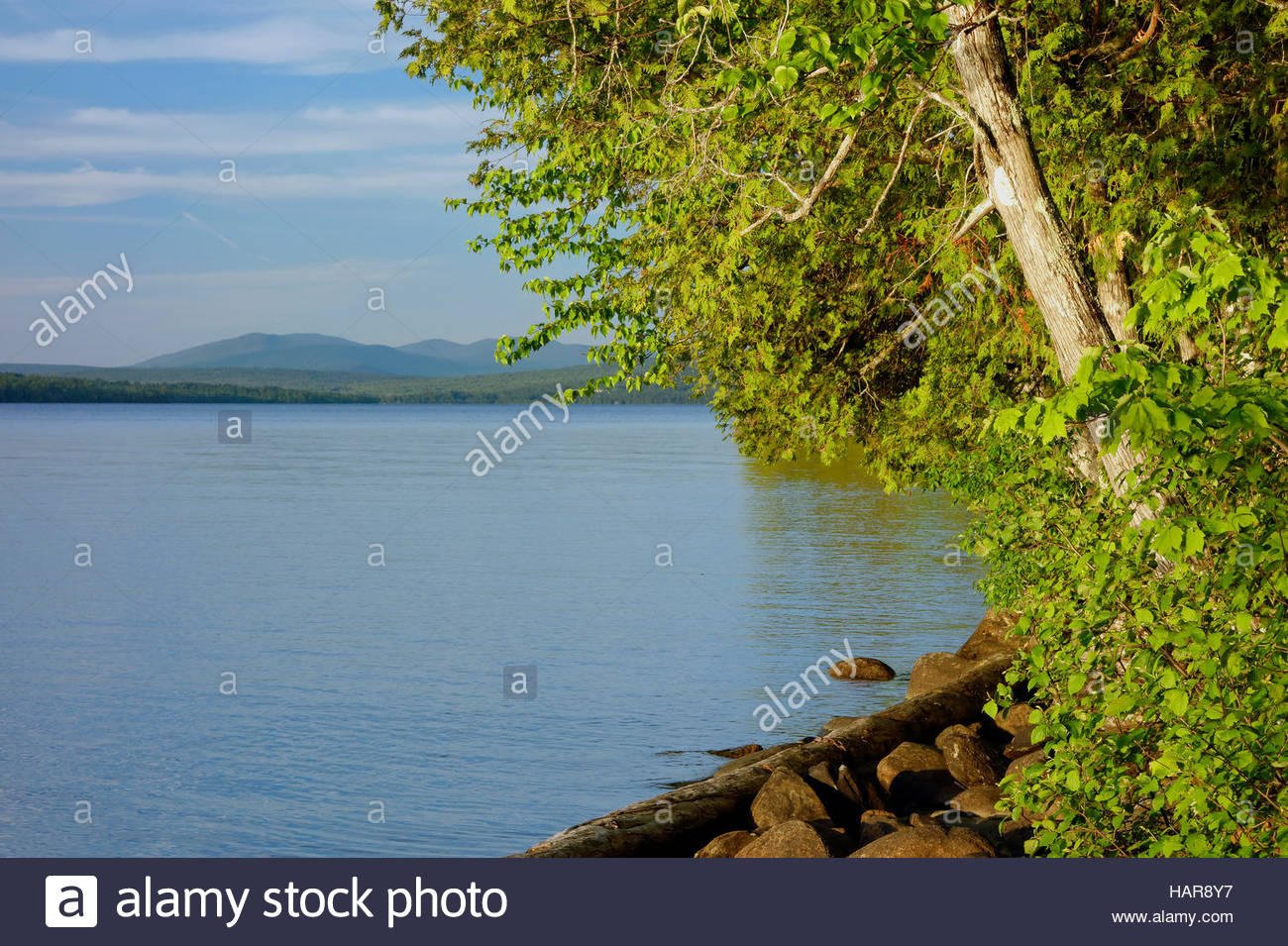 Rangeley Lakes State Park, Maine. - Stock Image