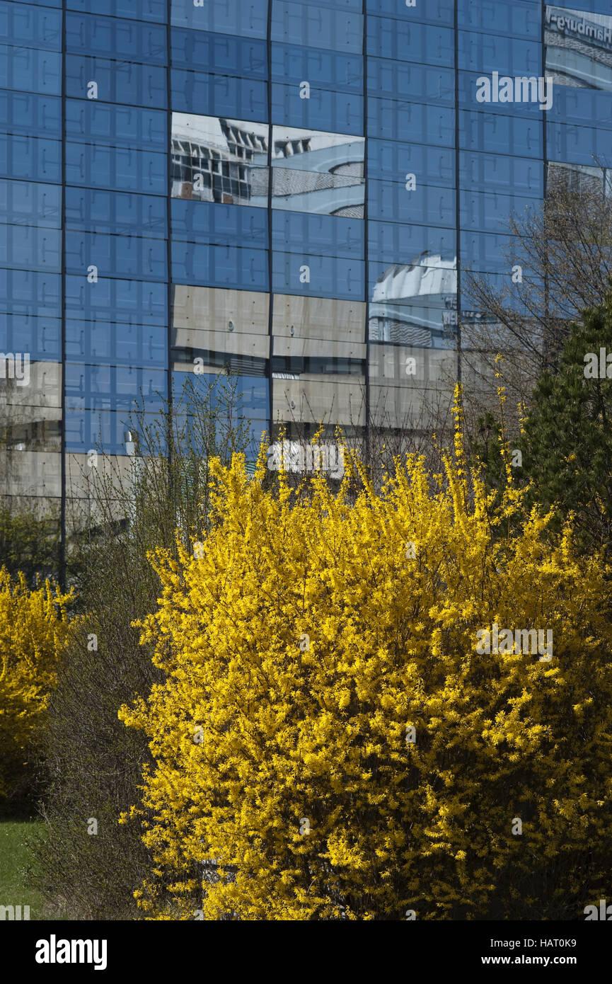 Facade with reflexion - Stock Image