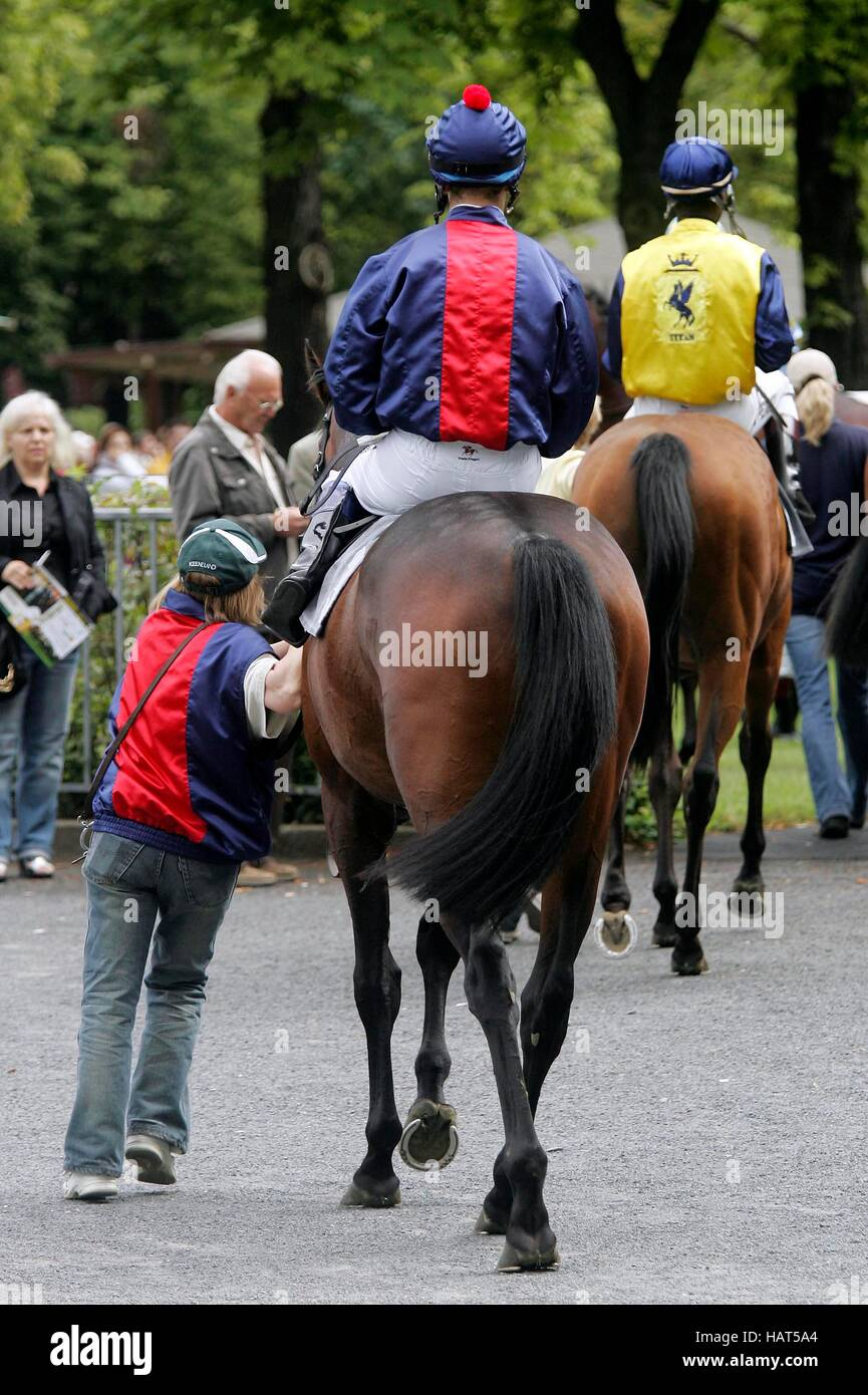 Jockey on a horse, sixth race day on 9.8.08 at Dresden-Seidnitz race course, Saxony Stock Photo