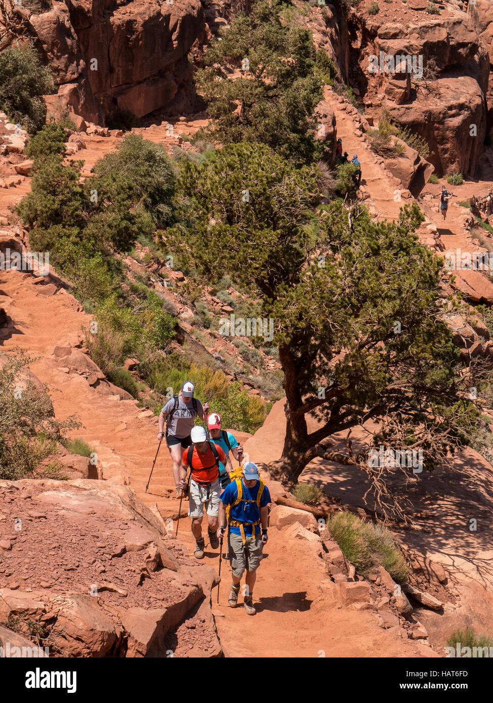 Hikers, South Kaibab Trail, Grand Canyon South Rim, Arizona. Stock Photo