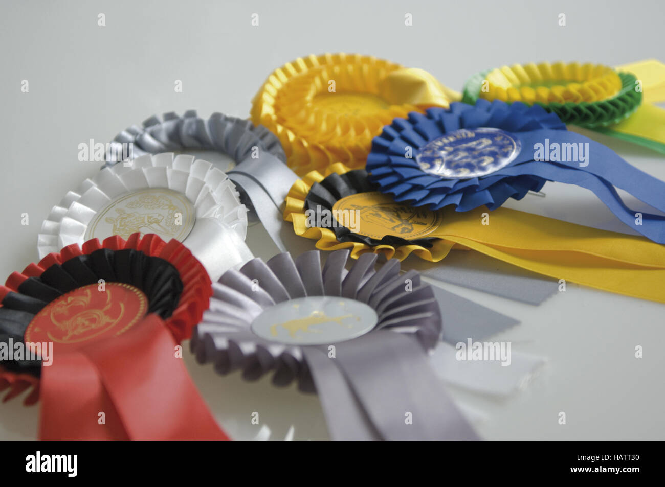 horsemanship - Stock Image