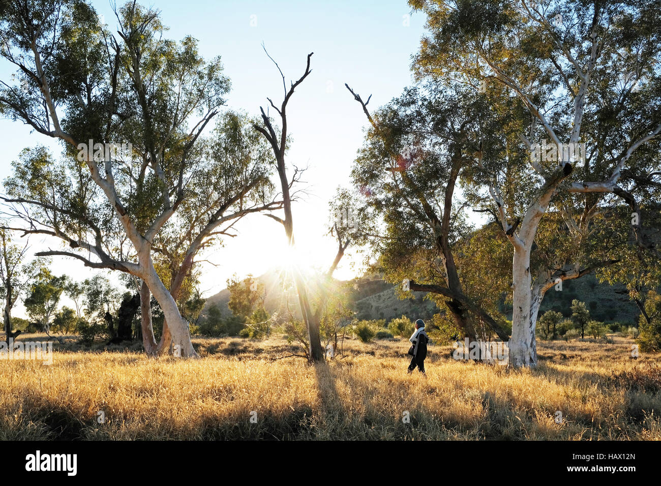 A woman walks through the morning sun at Honeymoon Gap in the MacDonnell Ranges, Northern Territory, Central Australia - Stock Image