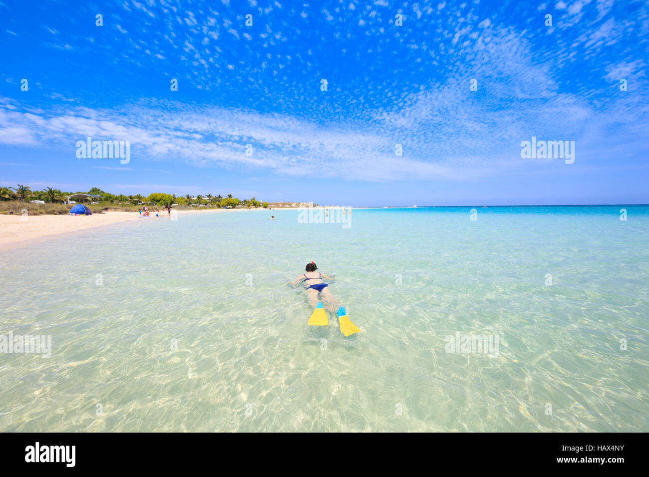 A woman snorkeling in the clear, shallow waters at Coral Bay. Western Australia - Stock Image