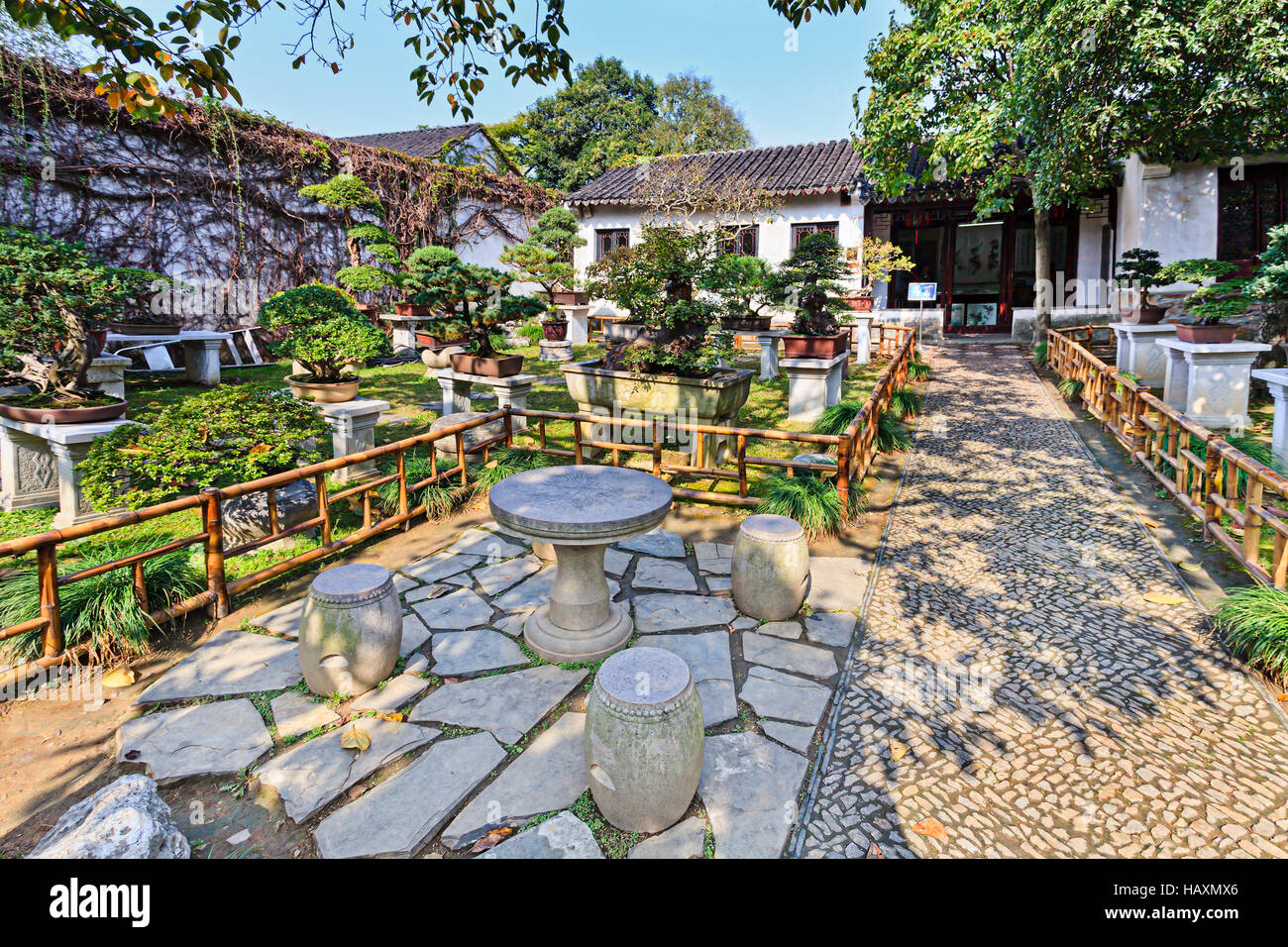 Traditional Chinese Garden Of Miniature Bonsai Trees In Pots Cultivated Suzhou Lingering Outdoors Decoration Fencing And Care Front