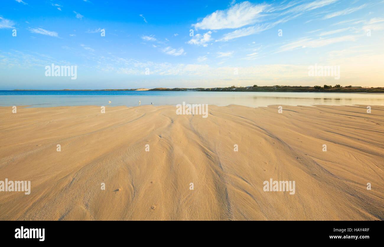 The beach - Stock Image