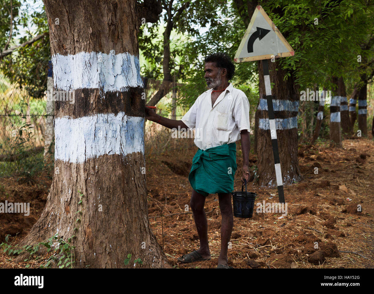 Indian worker painting safety marker rings on roadside trees, Tamil