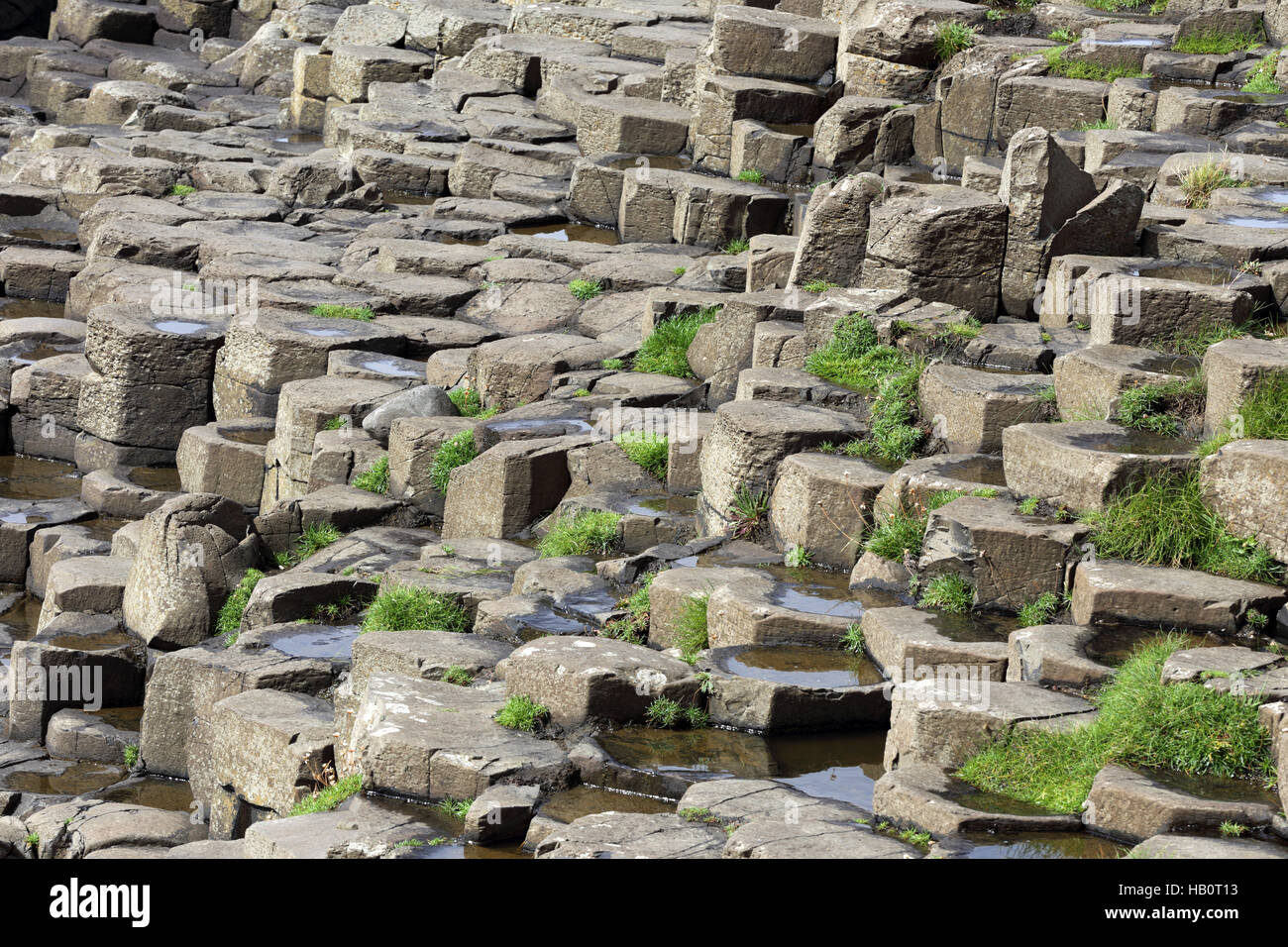 Basalt colums of Giant's Causeway, Ulster GB - Stock Image